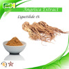 Factory supply Chinese Angelica Extract. Angelica Powder