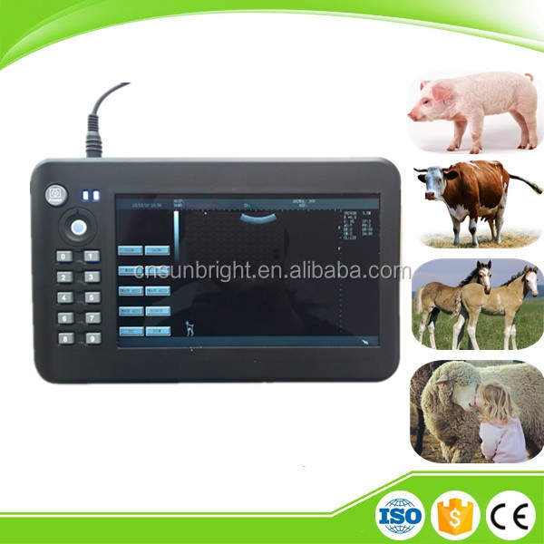 Handheld Best selling Veterinary Ultrasound Machine/Modern Medical Ultrasound Apparatus