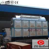 DZL hot sale coal fired boiler for home