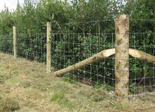 5 feet Farm Fencing Wire