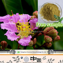 Best products for import free sample natural organic banaba extract india