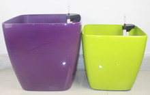 8 inch flower pots,valentines flower pots,flower pots delivery usa