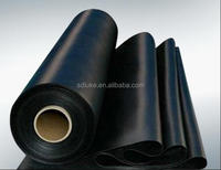 HDPE geomembrane,HDPE waterproof membrance