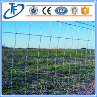 Hot sale cattle/goat field fence with best price