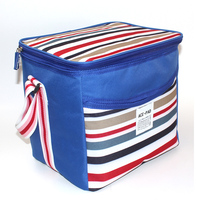 picnic lunch cooler bag for frozen food