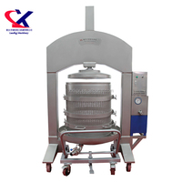 Winery Equipment Used Grape Wine Squeezing Machine, Specialized Wine Processing Equipment