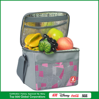 plain durable collapsible cheap picnic cooler bag with aluminium foil tableware bag