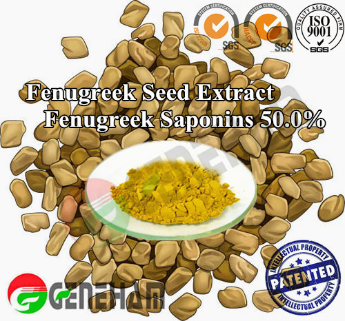 Testosterone Booster Furostanol Saponins/ Fenugreek Seed Herbal Extract