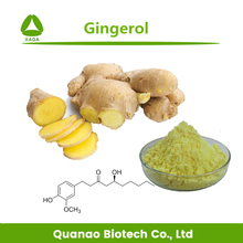 Hot sale Ginger root Extract Gingerol powder for protecting cardiovascular