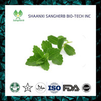 Different Models of 95% stevioside stevia leaves extract for sale