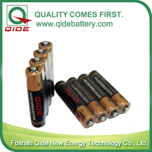 1.5V Primaty&Dry AA R6 Battery