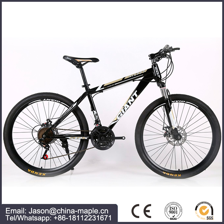 Factory OEM mountain bike with 21/24/27 speed Aluminum alloy MTB bicycle