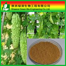 Natrual vegetable extract Bitter gourd powder