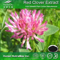 100% Natural Red Clover Extract Powder Isoflavones 8%, 20%, 40%