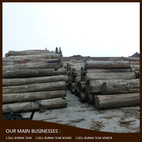 High demand products to sell Burma round logs indian teak wood price