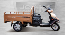 Loncin 120cc /150cc adult diesel motorized cargo 3 wheel motorcycle/trike for old people
