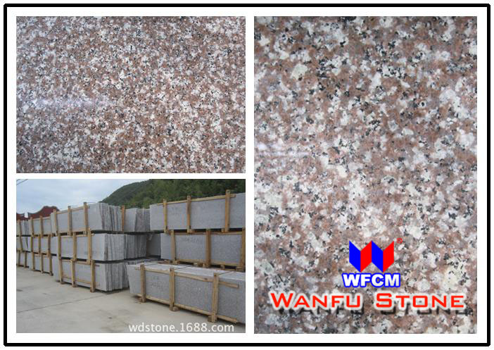 Chinese granite G664 slab for countertop & tiles