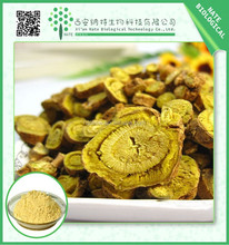 Hot Sale Chinese Skullcap extract 85% Baicalin powder