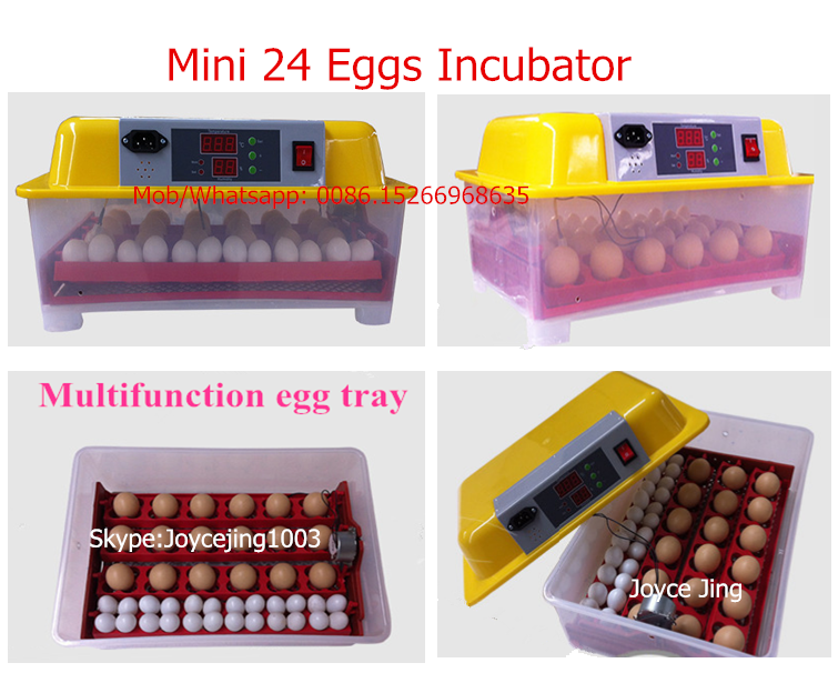 Good quality full automatic mini 24 eggs incubator for chicken, quail, duck eggs. (skype: judy.ming11)