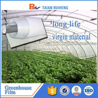Professional Factory Greenhouse Film, greenhouse plastic film