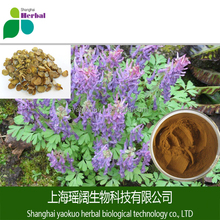 Chinese Natural Rhizoma corydalis extract/Rhizoma corydalis P.E/Corydalis yanhusuo extract by TLC 10:1