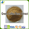 Best Pricing, Best Service, Best Ingredients Green Coffee bean extract powder. ISO/GMP certificate