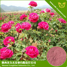 The Rose Extract Conditioning Menstrual Problems