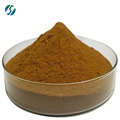 Tongkat Ali Extract 200:1.Tongkat Ali Extract Powder From Root 84633-29-4