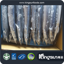 top grade frozen pacific saury W/R