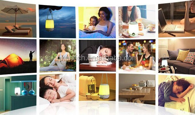 Indoor Portable Music LED Mood Light For Hotel decoration