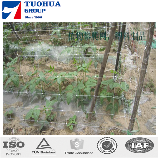 factory direct price extruded plastic pea and bean net/climbing plant support net/agricultural cucumber