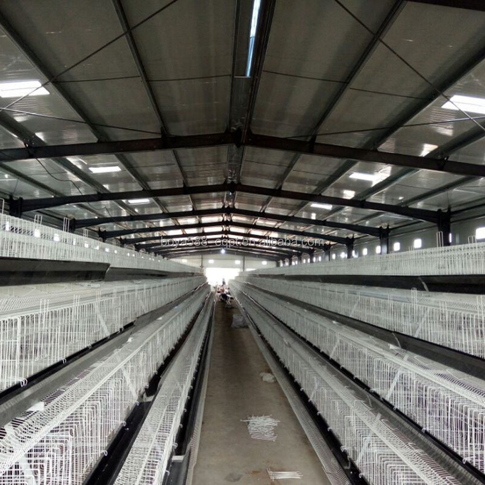 poultry egg layer chicken breeding cages