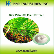 Saw palmetto Fuit extract/cas no. 84604-15-9