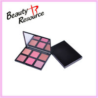 ES8110 Beauty Resource 6colors fashion blusher