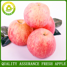 Fresh fruit red fuji apple best price exporter in china 80# A/B
