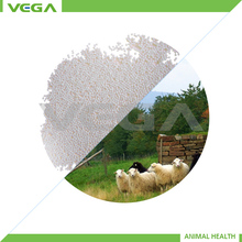 coated acidifier organic acid granule goat feed more advantages product