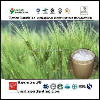High quality Hordeum vulgare extract powder Hordenine