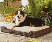 Rattan Dog Bed in Dog Beds