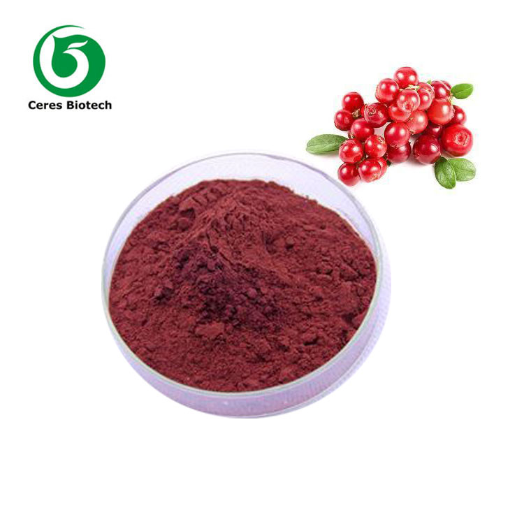 Professional Manufacturer Supply Cranberry Extract