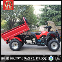 10 Inch Off Road Tire 110cc quad bike with high quality JLA-13T-10