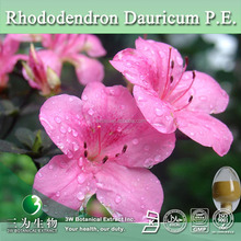 Rhododendron Dauricum Extract,Rhododendron Simsii Planch P.E.