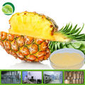 GMP supply dried pineapple powder