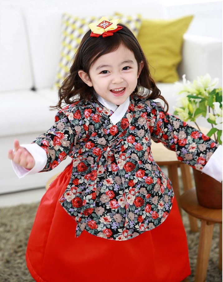 Girl Hanbok Dolbok Korean Traditional Dress children First Birthday Dresses Flower