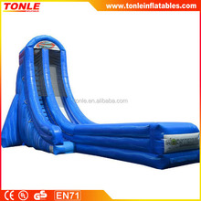 giant Vertical Screamer inflatable wate rslide/ inflatable slip n slide/ inflatable water equipment for sale