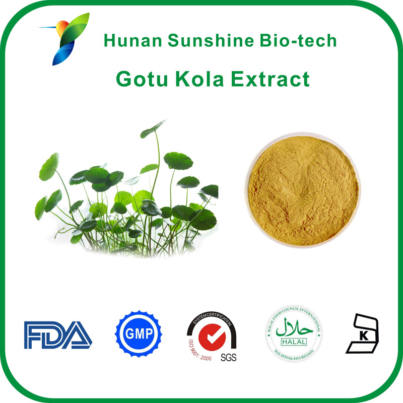 Cosmetic Raw Material gotu kola leaf extract herb powder for skin