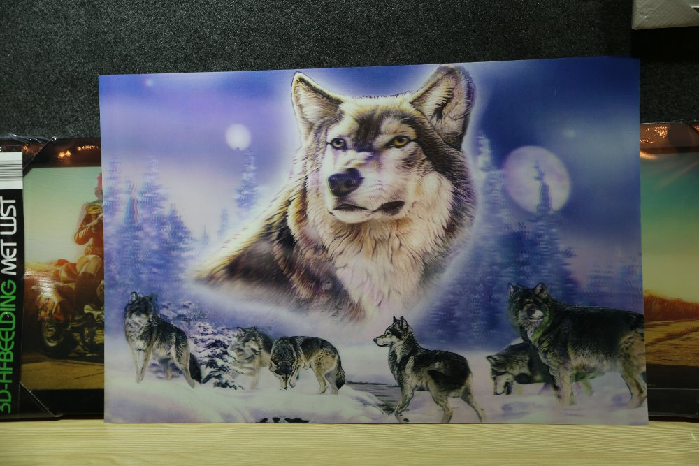 strong tiger and brave wolf 3d picture with good quality