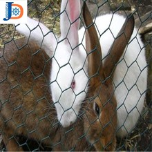 Anping cheap galvanized welded rabbit cage wire mesh