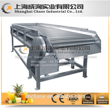 High-end products fine workmanship dried fruit process line with certificate