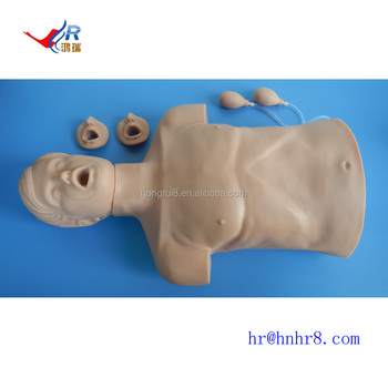 Imported Plastic Half Body CPR Training Manikin, cheap CPR Manikin