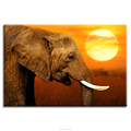 Charming Sun Light Elephant Photo Canvas Prints Home Decoration Goods HD Animal Picture Canvas Printing Wall Decor
